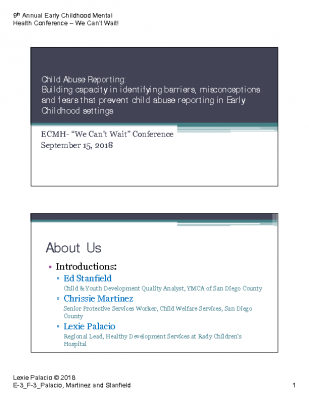 E-3 and F-3_Lexie Palacio_ Child Abuse Reporting_PPT Handout